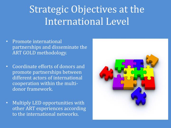 Strategic Objectives at the International Level
