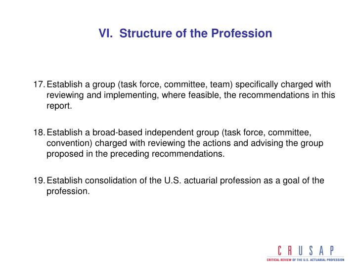 VI.  Structure of the Profession