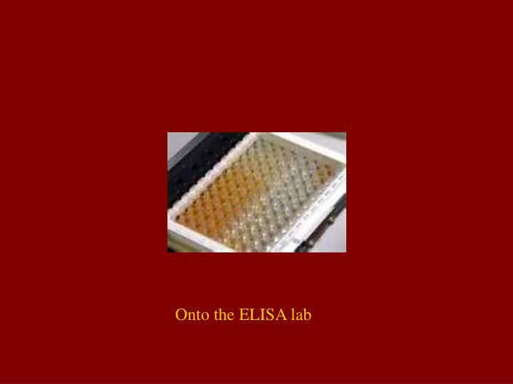 Onto the ELISA lab
