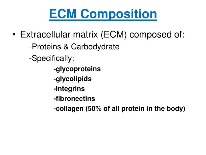 ECM Composition