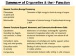 summary of organelles their function