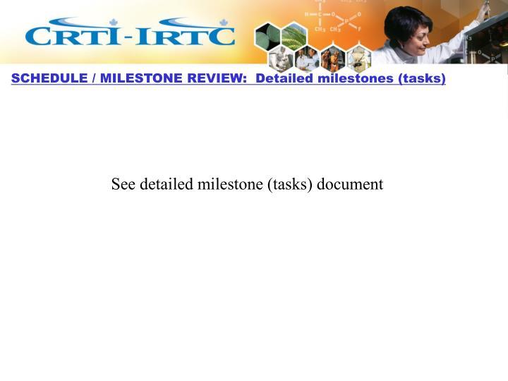 SCHEDULE / MILESTONE REVIEW:  Detailed milestones (tasks)