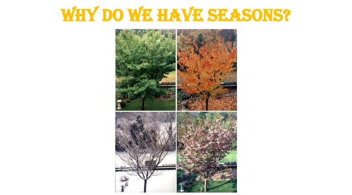 Why do we have seasons