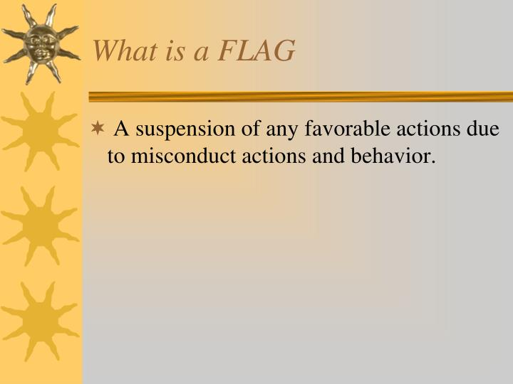 What is a FLAG