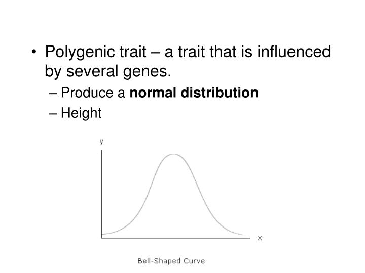 Polygenic trait – a trait that is influenced by several genes.