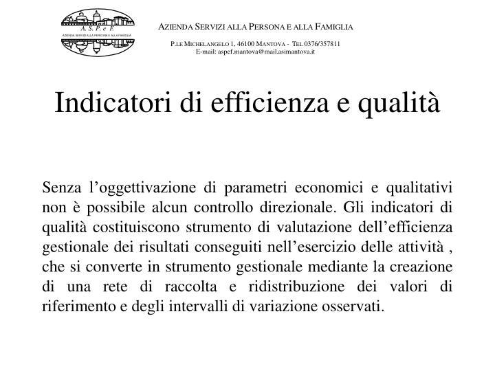 Indicatori di efficienza e qualità