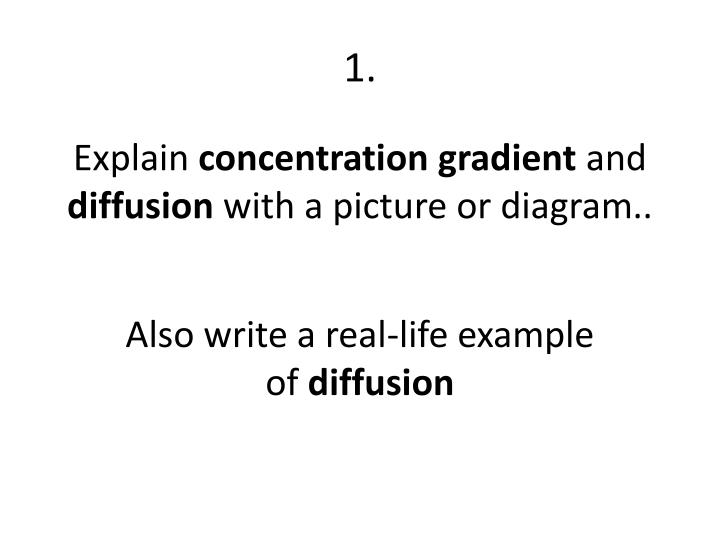 explain the relationship between diffusion concentration gradient and equilibrium