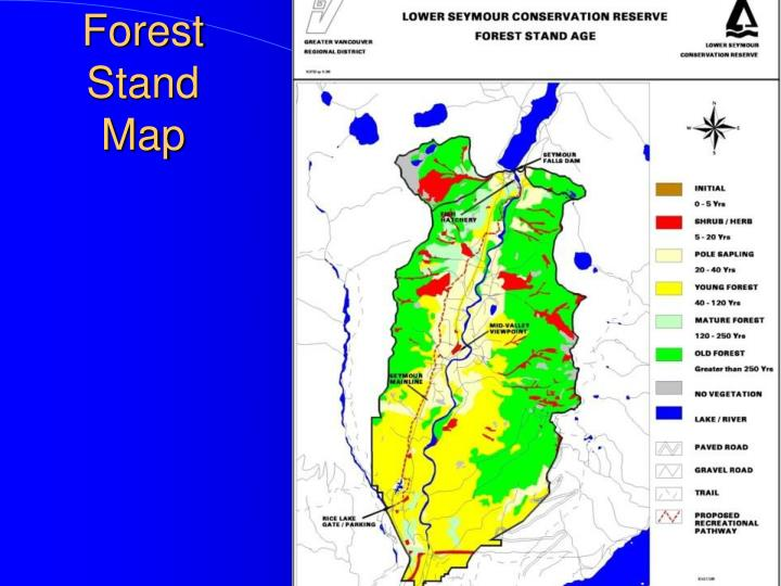 Forest Stand Map