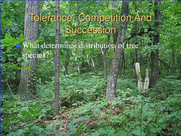 Tolerance, Competition And Succession