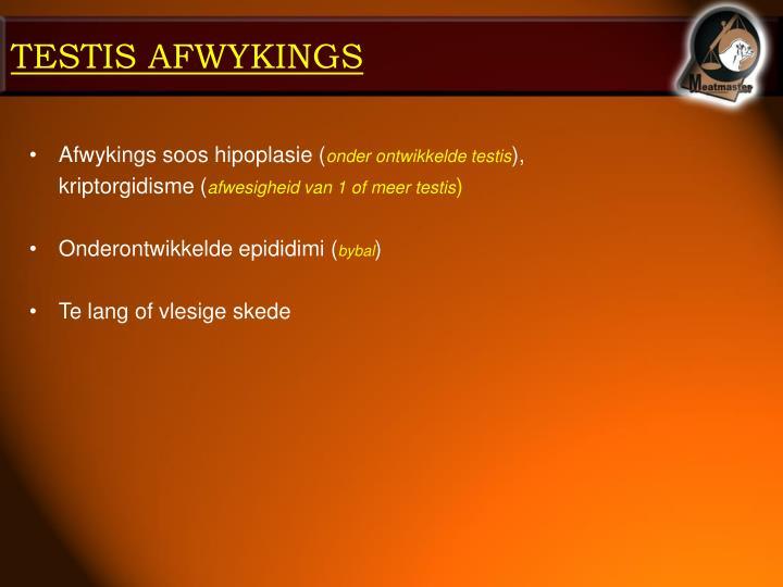 TESTIS AFWYKINGS