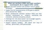 what can northern ngos and their southern counterparts do to support efa contd