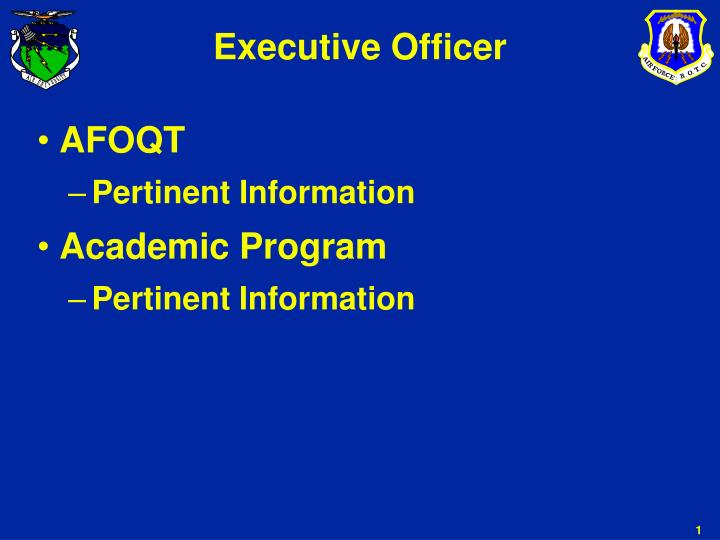 Executive officer