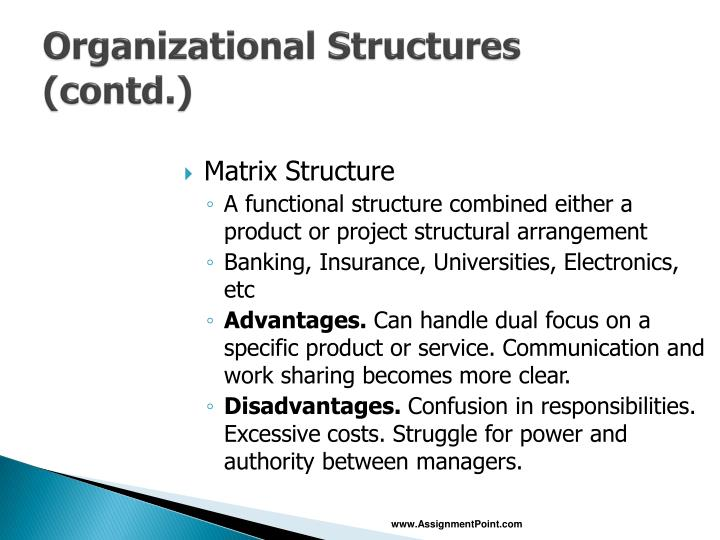 Organizational Structures (contd.)