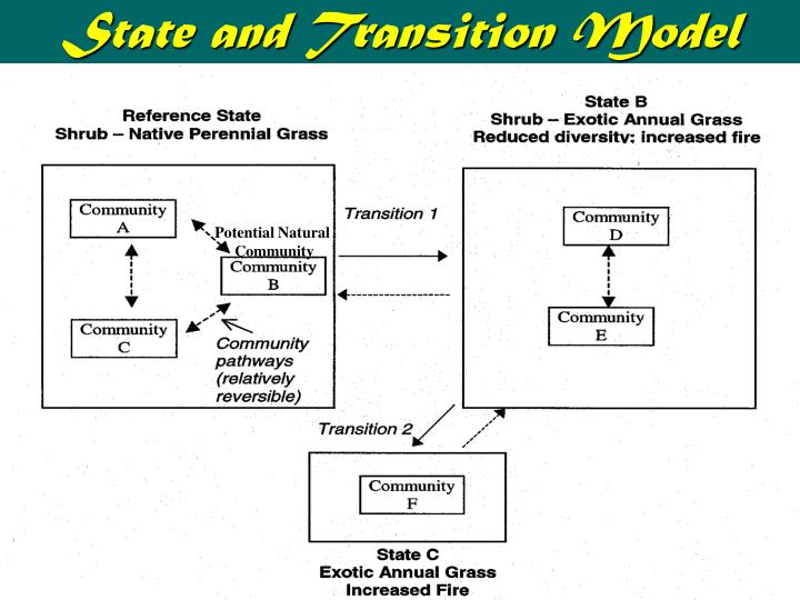 State and Transition Model