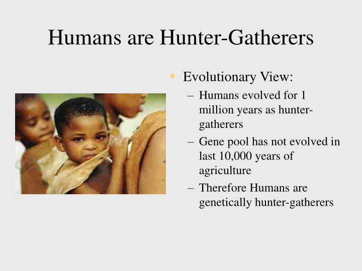 human and evolution essay Man is a product of evolution therefore human evolution is intimately related to the origin of life and its development on the face of earth.