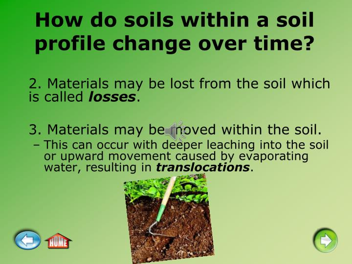 How do soils within a soil profile change over time?