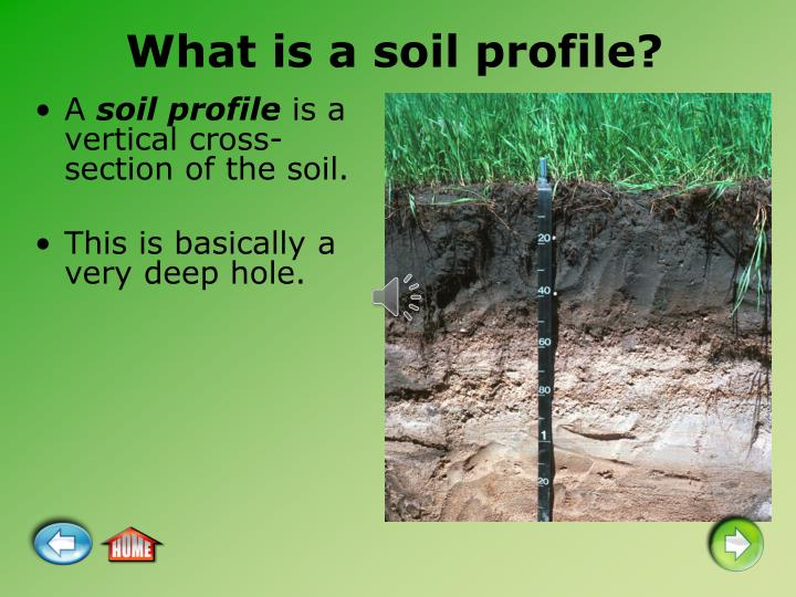 What is a soil profile