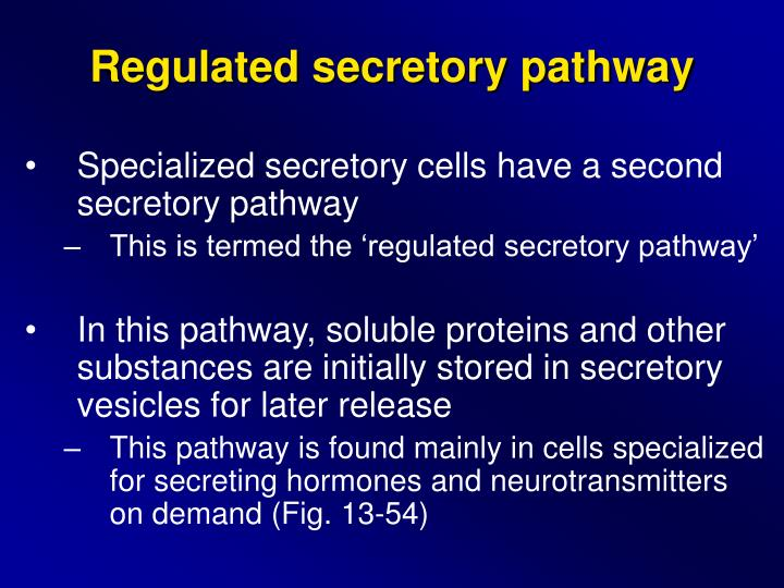 Regulated secretory pathway