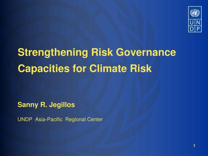 Strengthening risk governance capacities for climate risk