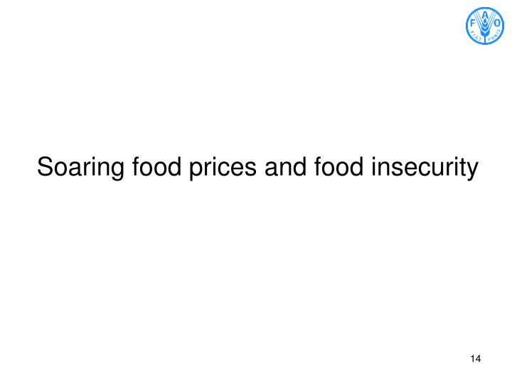 Soaring food prices and food insecurity
