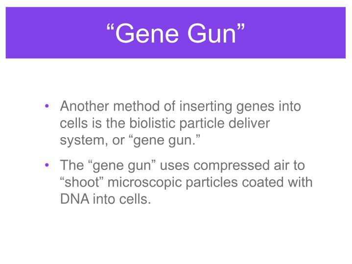 """""""Gene Gun"""""""