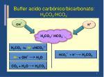 buffer acido carb nico bicarbonato h 2 co 3 hco 3