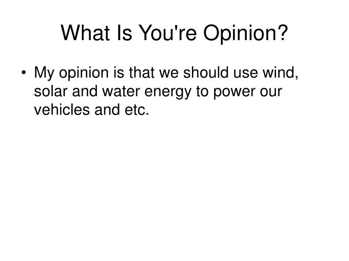What Is You're Opinion?