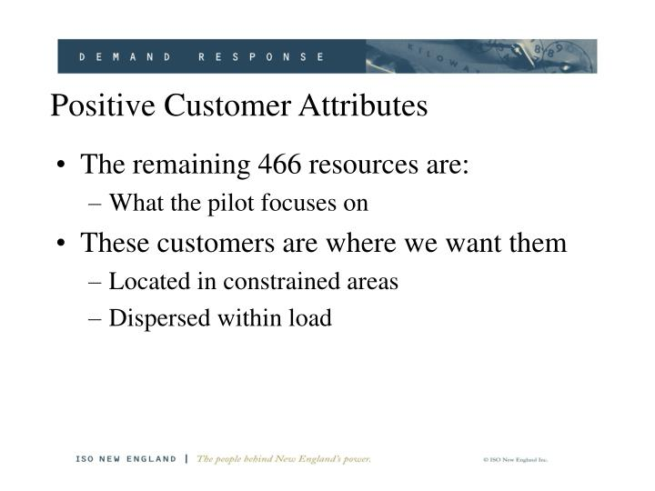 Positive Customer Attributes