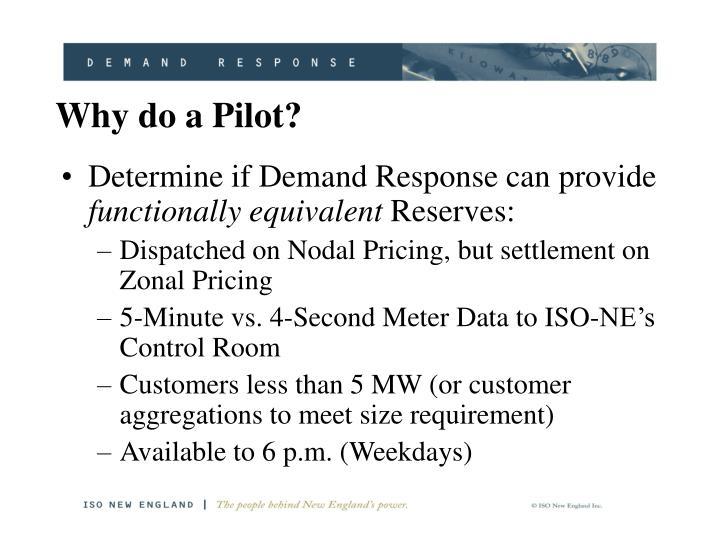 Why do a Pilot?
