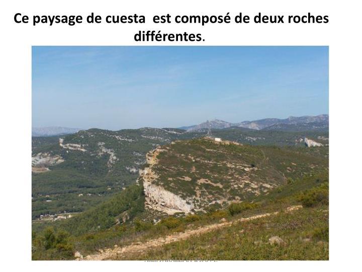 Ce paysage de cuesta  est composé de deux roches différentes