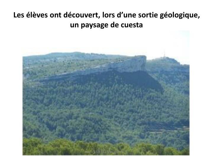 Les élèves ont découvert, lors d'une sortie géologique, un paysage de cuesta