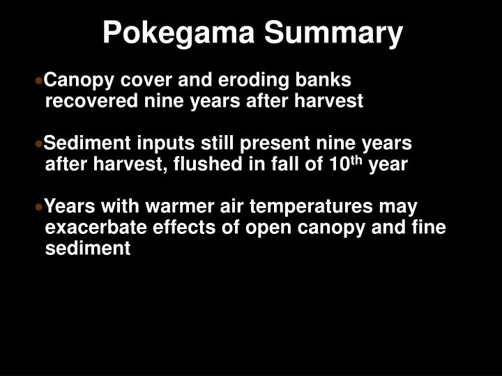 Pokegama Summary