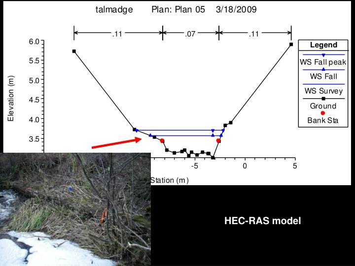 HEC-RAS model