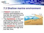 7 3 shallow marine environment