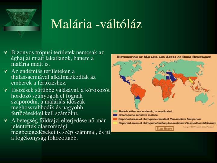 Malária -váltóláz