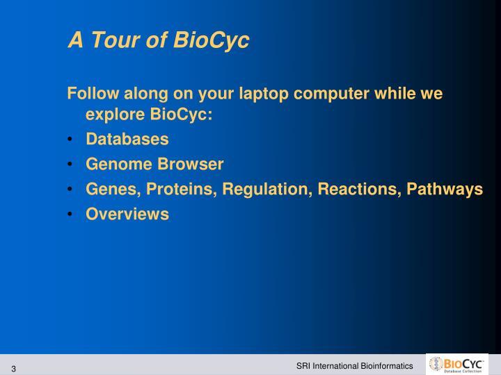 A Tour of BioCyc