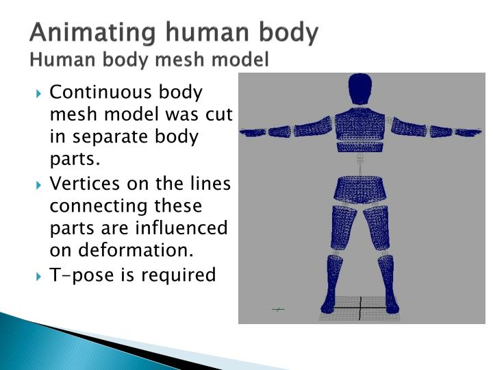 Animating human body
