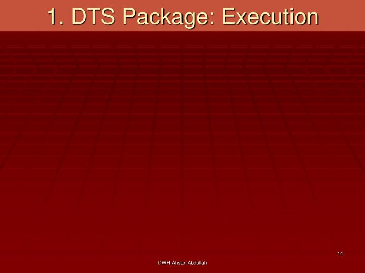 1. DTS Package: Execution