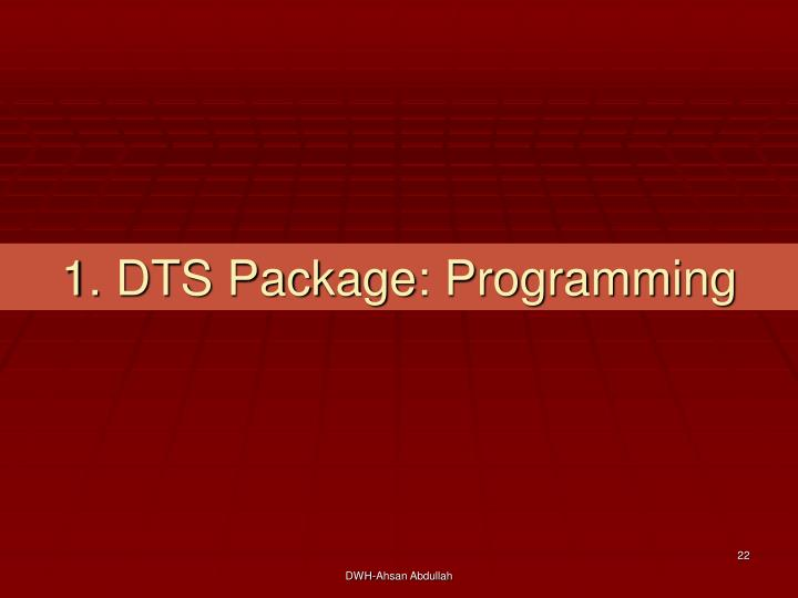 1. DTS Package: Programming