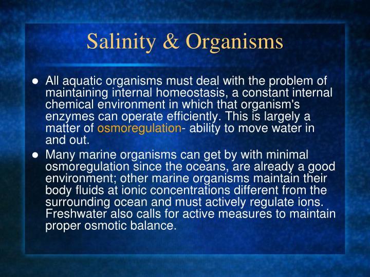 Salinity & Organisms