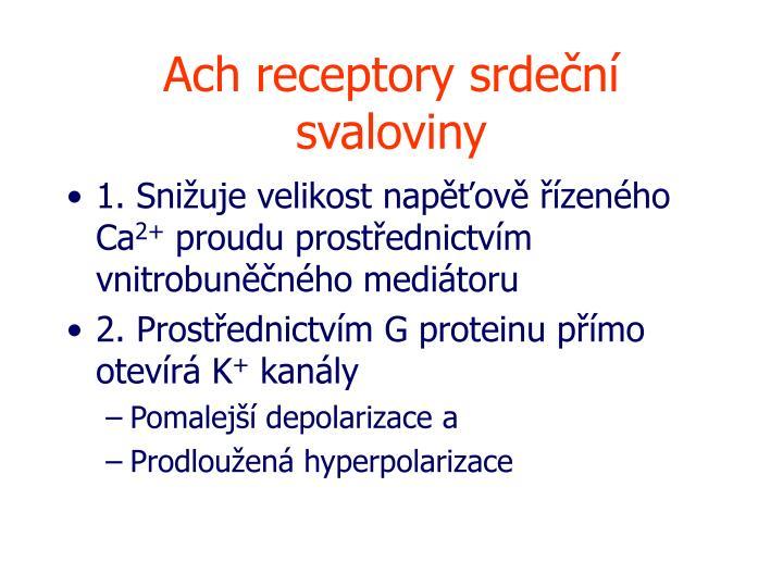 Ach receptory srdeční svaloviny