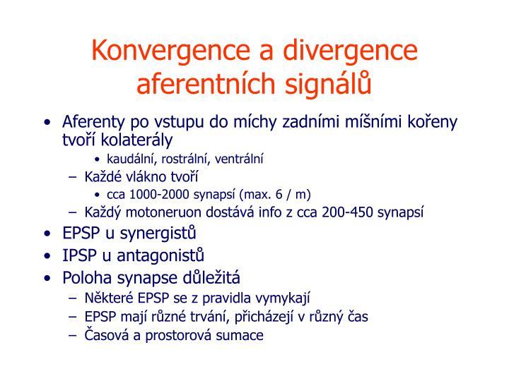 Konvergence a divergence aferentních signálů
