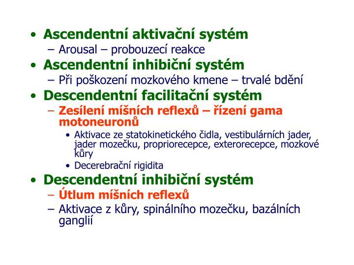 Ascendentní aktivační systém