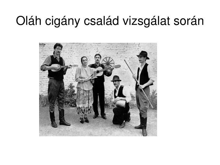 Oláh cigány család vizsgálat során