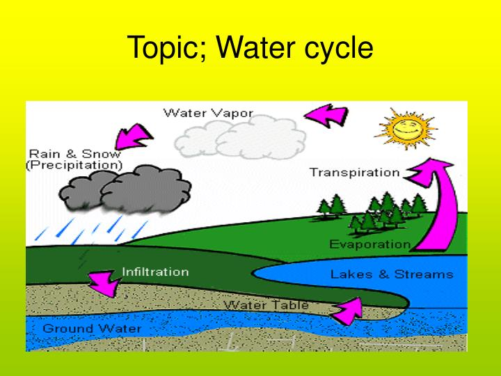 Topic water cycle