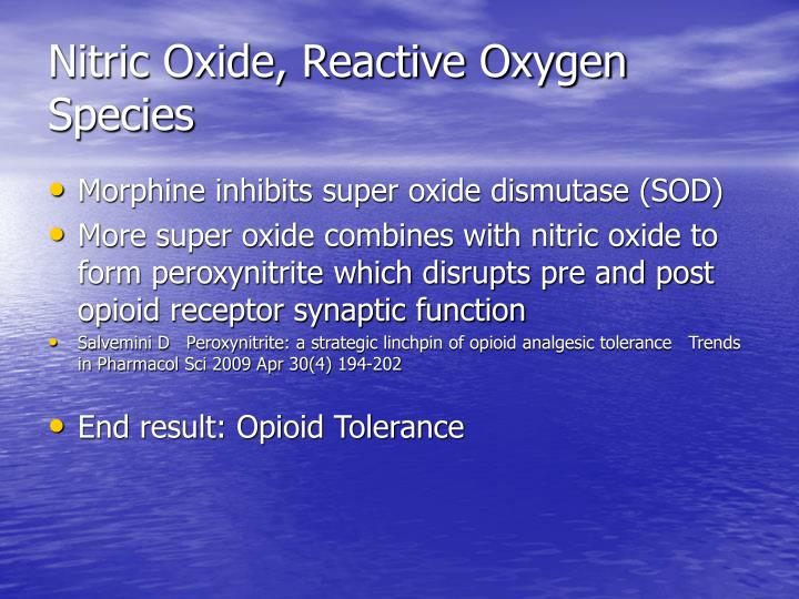 Nitric Oxide, Reactive Oxygen Species