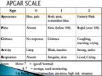apgar scale1