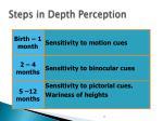 steps in depth perception