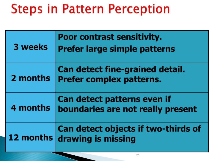 Steps in Pattern Perception