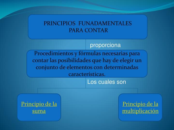 PRINCIPIOS  FUNADAMENTALES